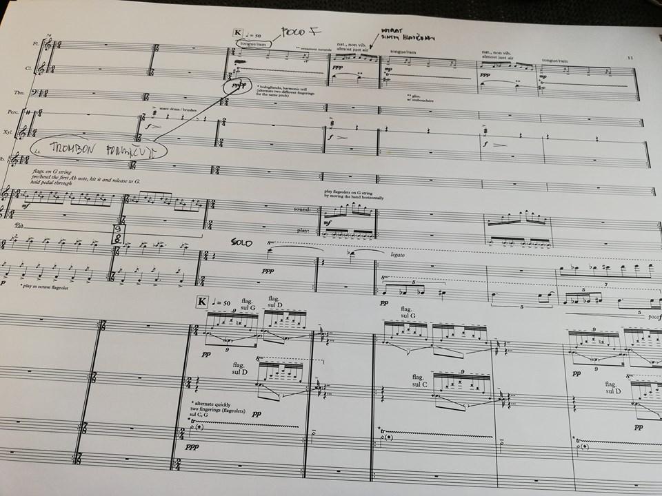 František Chaloupka: Ke xylofonii obscénního nad vědomím vagónii (world premiere)